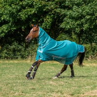 Fliegendecke Bucas Freedom Fly Sheet F/N